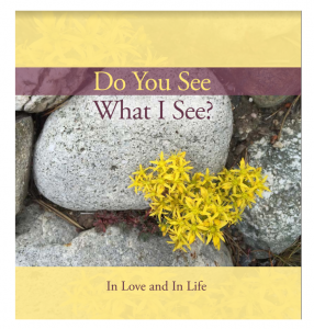 Do You See What I See - Suzanne Beranek